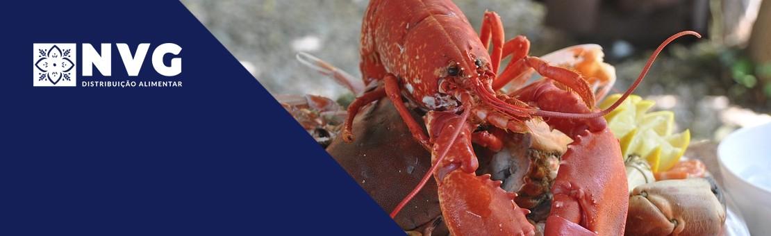 Excelência em Mariscos e Peixe